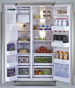 Organized-Refrigerator