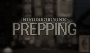 Introduction-Into-Prepping-460x300 (1)