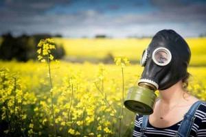 gmo-protest-maize-crop-genes-dangers_02