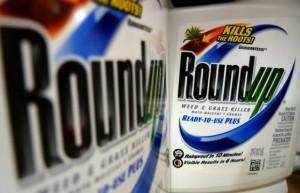 roundup-638x411