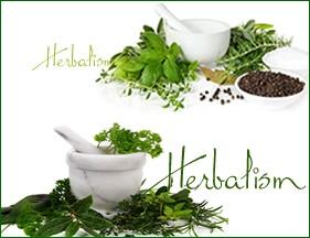 sp-herbalism-4
